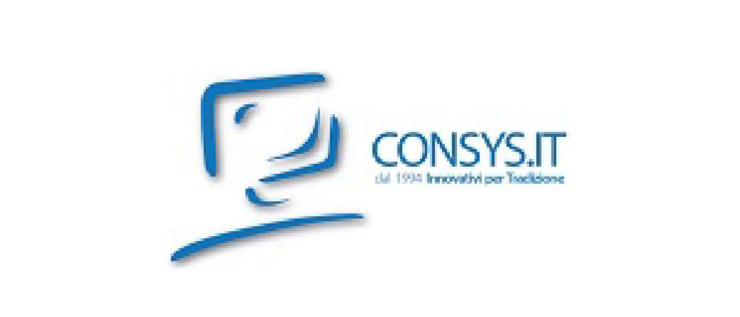 Azienda IT in ambito sicurezza e cyber sicurezza, Consys è partner del programma da 10 anni